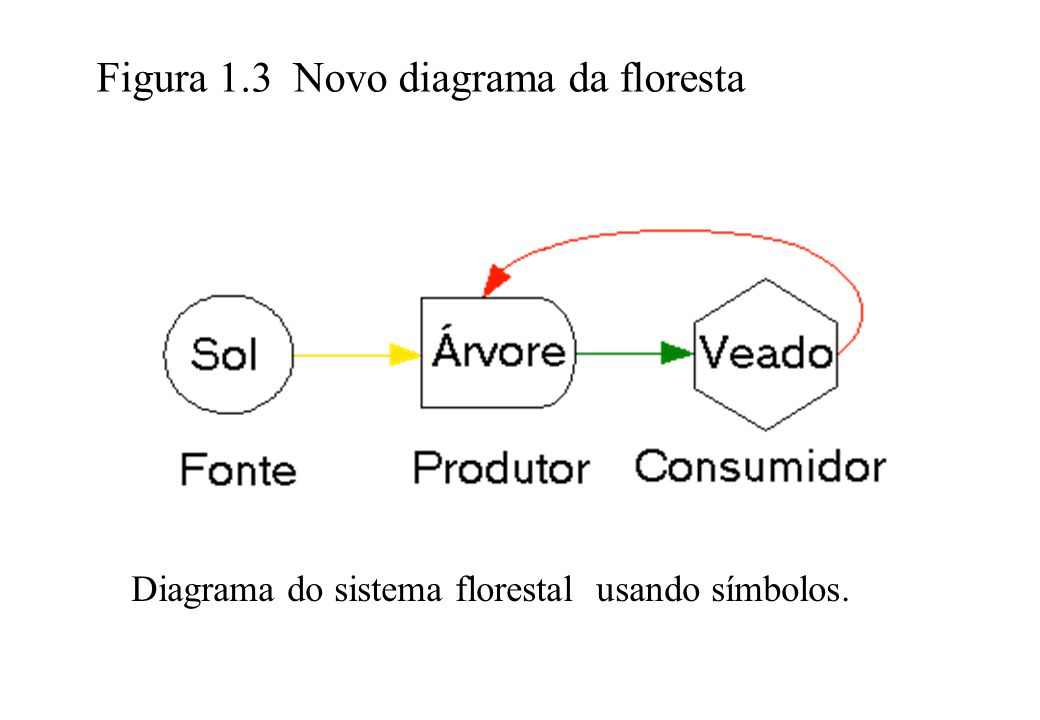 Figura 1.3 Novo diagrama da floresta
