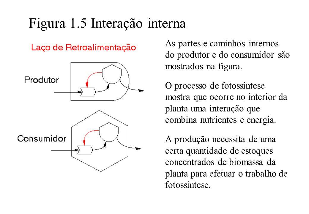 Figura 1.5 Interação interna