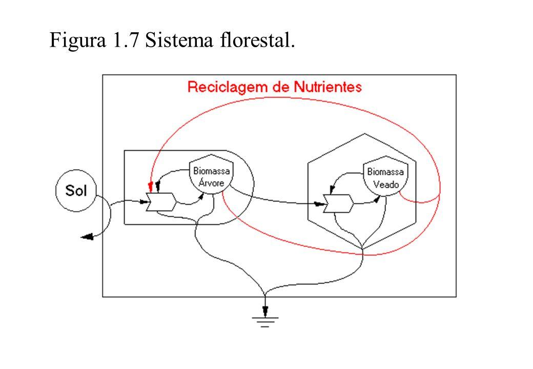 Figura 1.7 Sistema florestal.