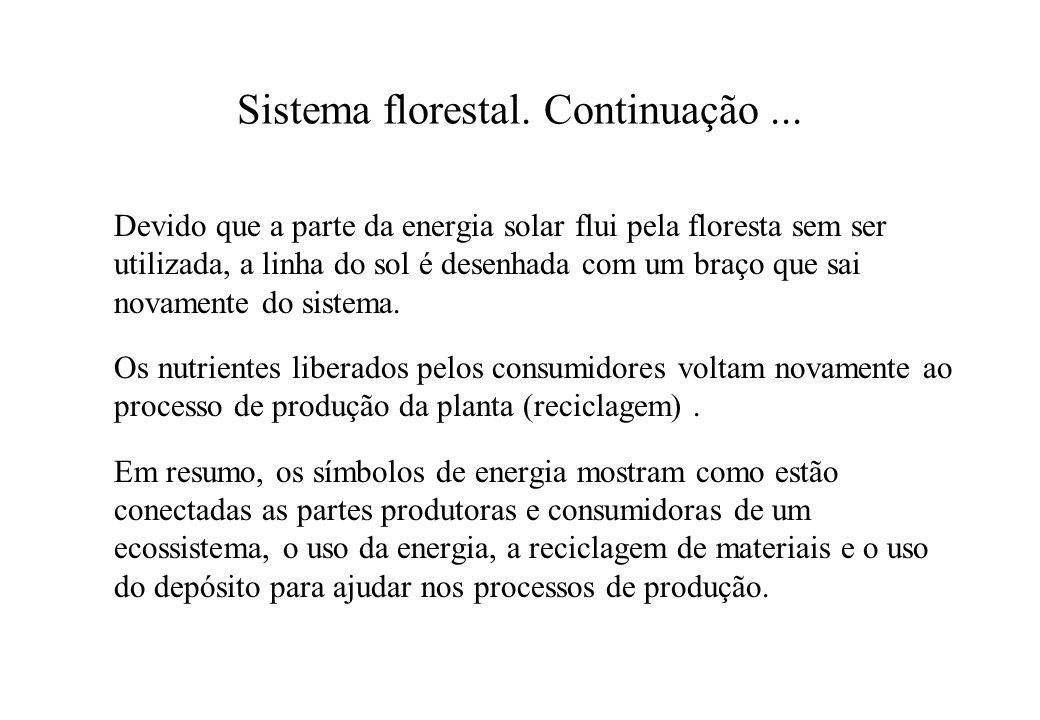 Sistema florestal. Continuação ...