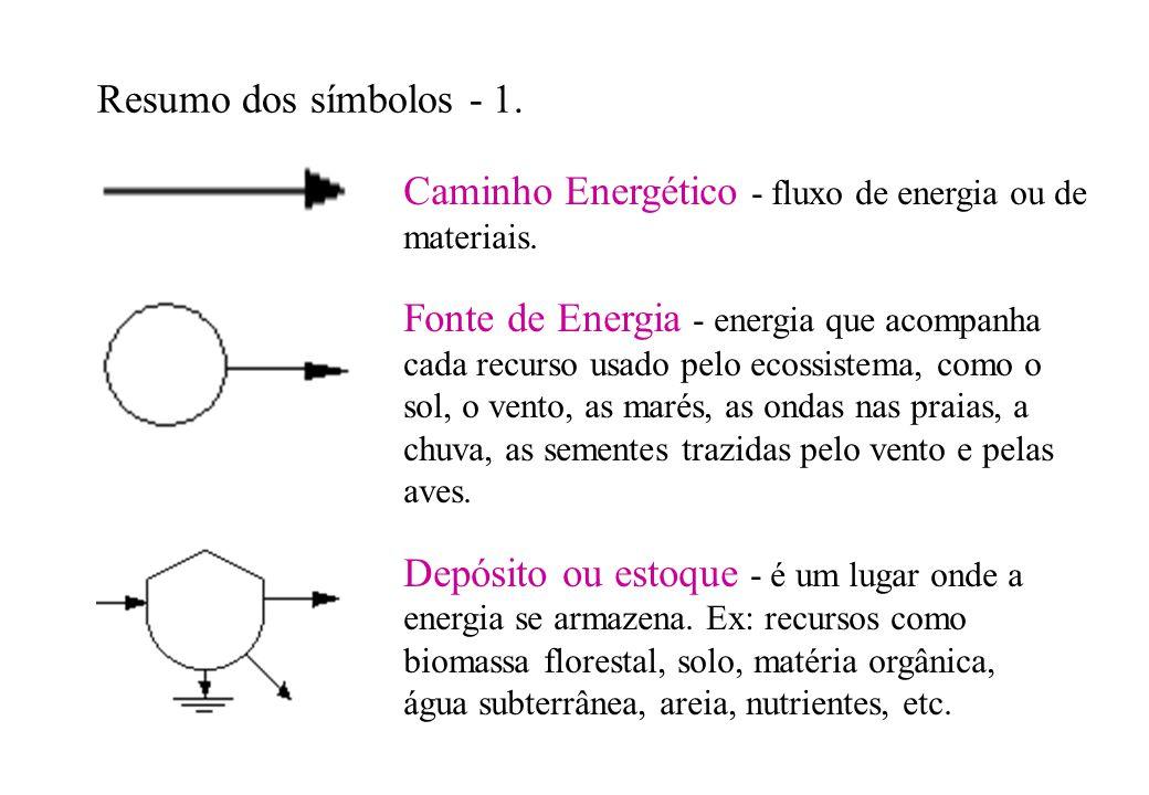 Caminho Energético - fluxo de energia ou de materiais.
