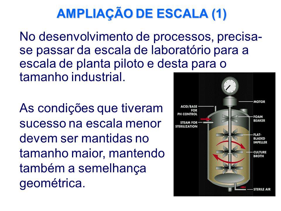 AMPLIAÇÃO DE ESCALA (1)