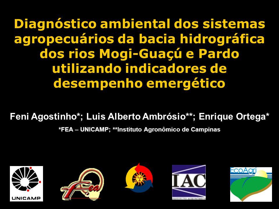 Diagnóstico ambiental dos sistemas agropecuários da bacia hidrográfica dos rios Mogi-Guaçú e Pardo utilizando indicadores de desempenho emergético