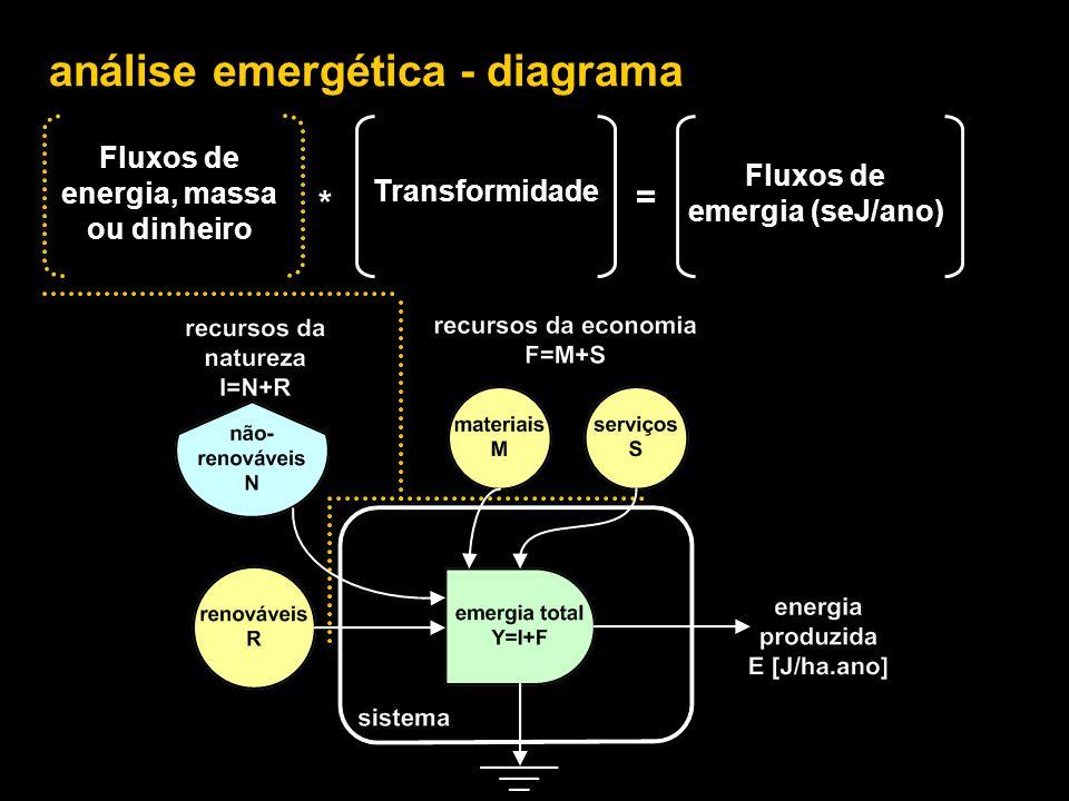 Fluxos de energia, massa ou dinheiro Fluxos de emergia (seJ/ano)