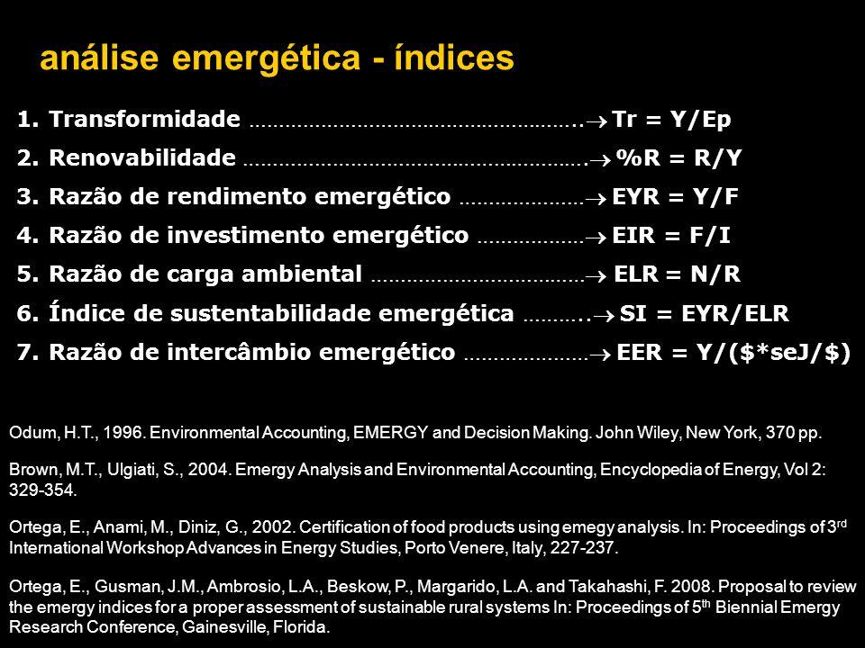 análise emergética - índices