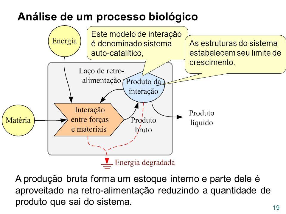 Análise de um processo biológico