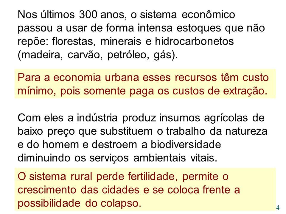 Nos últimos 300 anos, o sistema econômico passou a usar de forma intensa estoques que não repõe: florestas, minerais e hidrocarbonetos (madeira, carvão, petróleo, gás).