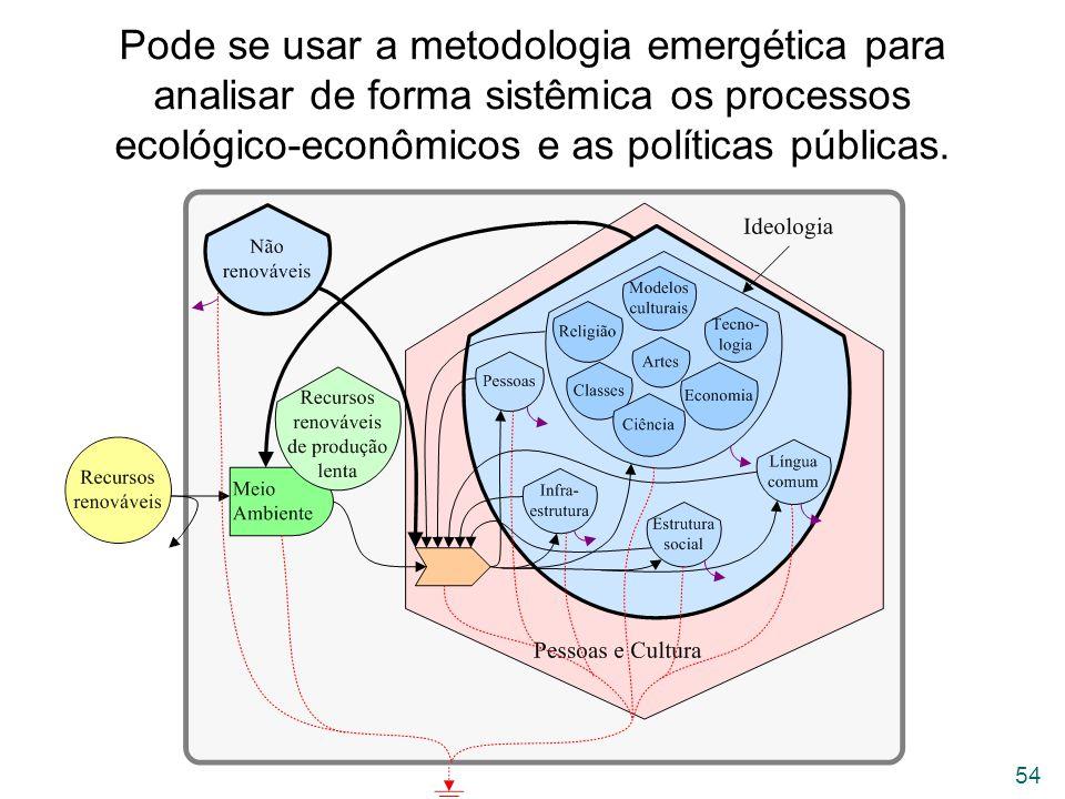 Pode se usar a metodologia emergética para analisar de forma sistêmica os processos ecológico-econômicos e as políticas públicas.