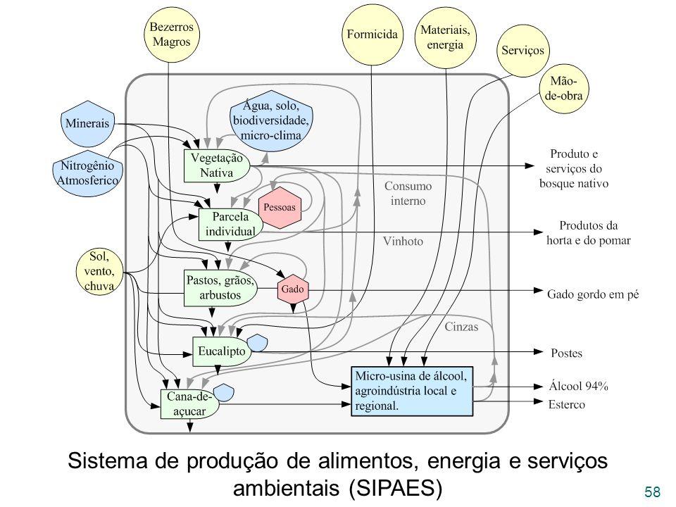 Sistema de produção de alimentos, energia e serviços ambientais (SIPAES)