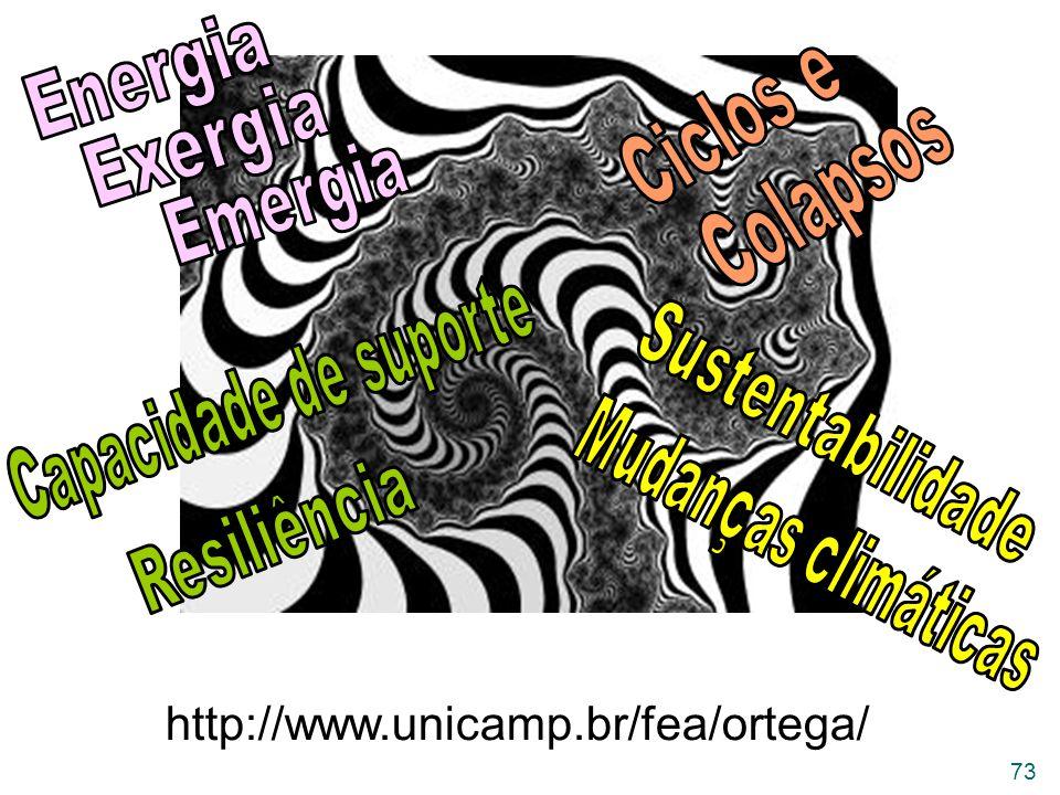 Ciclos e Colapsos Energia Exergia Emergia Capacidade de suporte