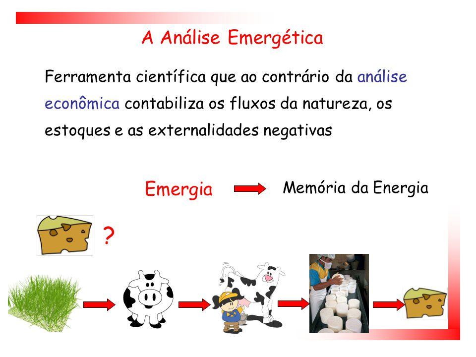 A Análise Emergética Emergia