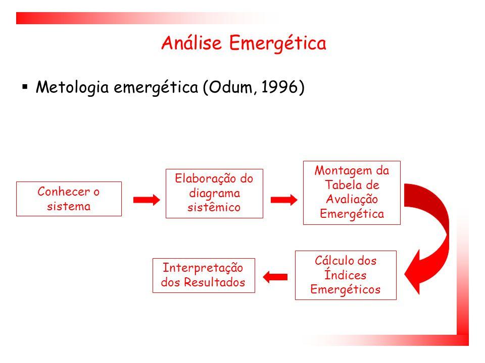 Análise Emergética Metologia emergética (Odum, 1996)