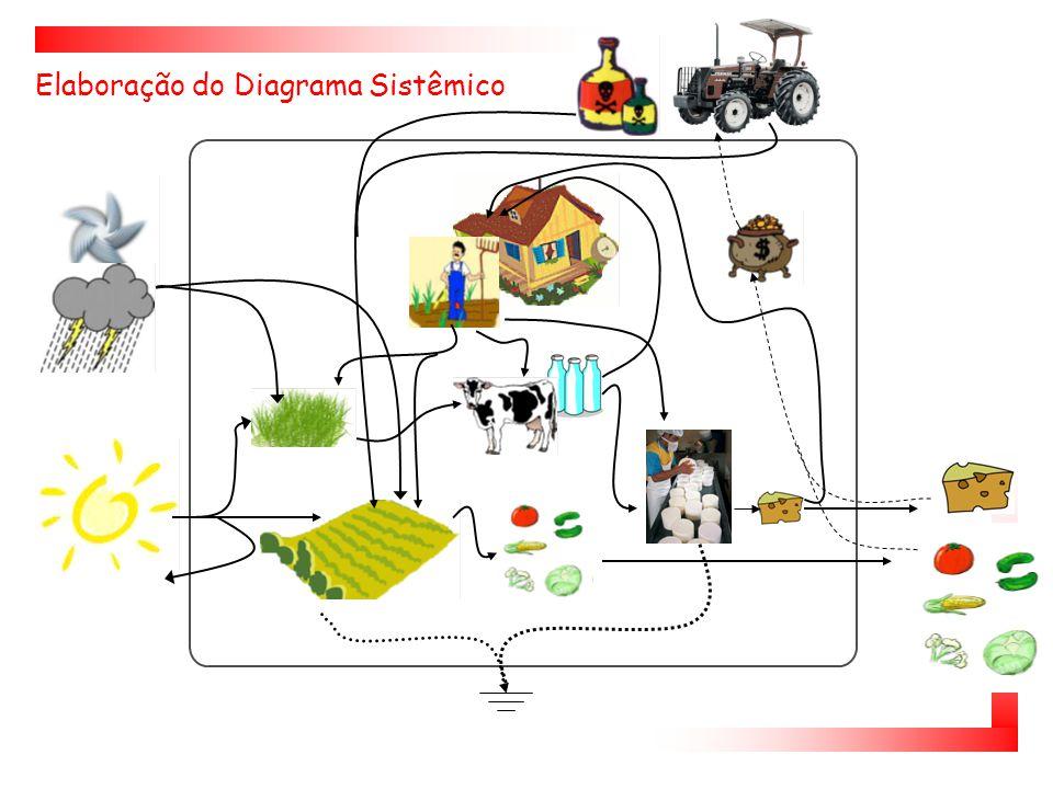 Elaboração do Diagrama Sistêmico
