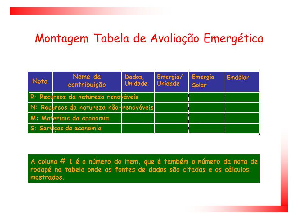 Montagem Tabela de Avaliação Emergética