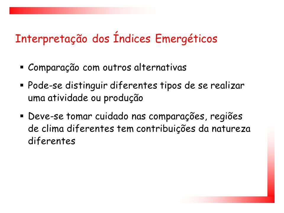 Interpretação dos Índices Emergéticos