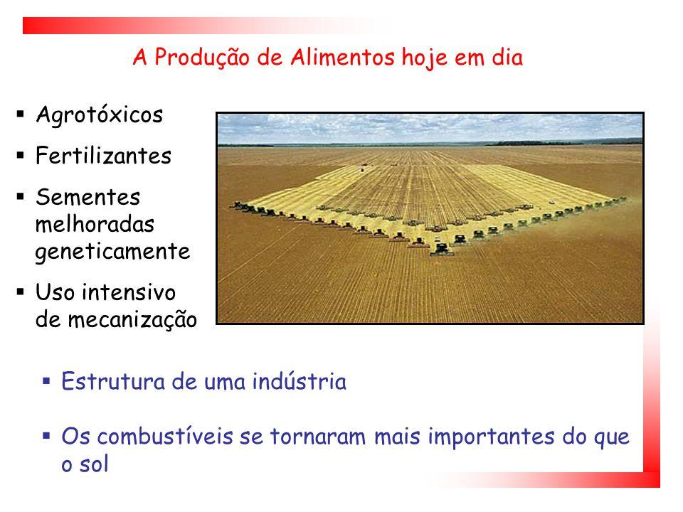 A Produção de Alimentos hoje em dia