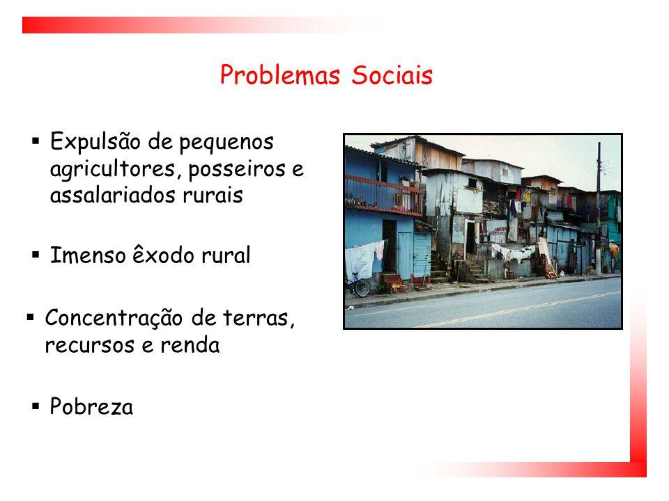 Problemas Sociais Expulsão de pequenos agricultores, posseiros e assalariados rurais. Imenso êxodo rural.