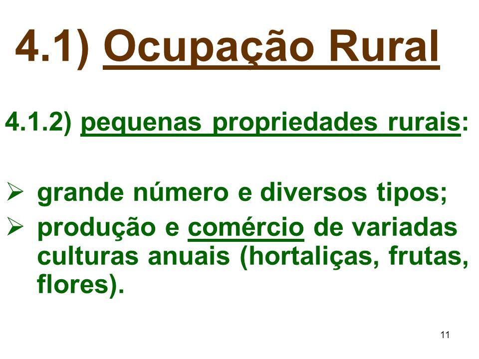 4.1) Ocupação Rural 4.1.2) pequenas propriedades rurais: