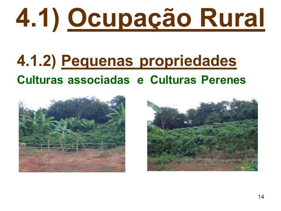 4.1) Ocupação Rural 4.1.2) Pequenas propriedades