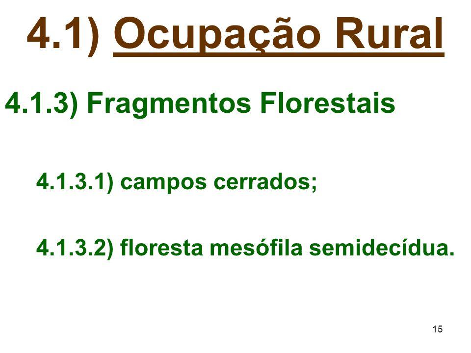 4.1) Ocupação Rural 4.1.3) Fragmentos Florestais