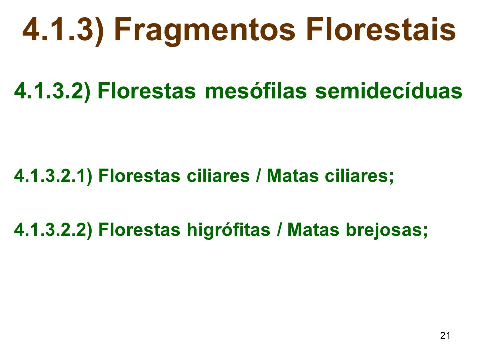 4.1.3) Fragmentos Florestais