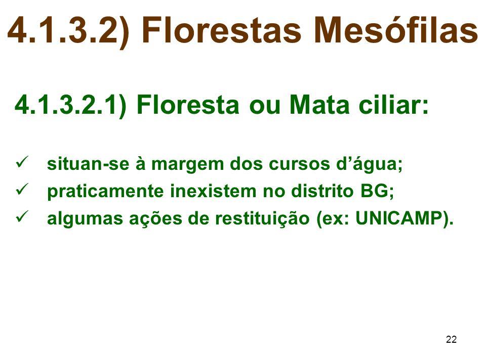 4.1.3.2) Florestas Mesófilas 4.1.3.2.1) Floresta ou Mata ciliar: