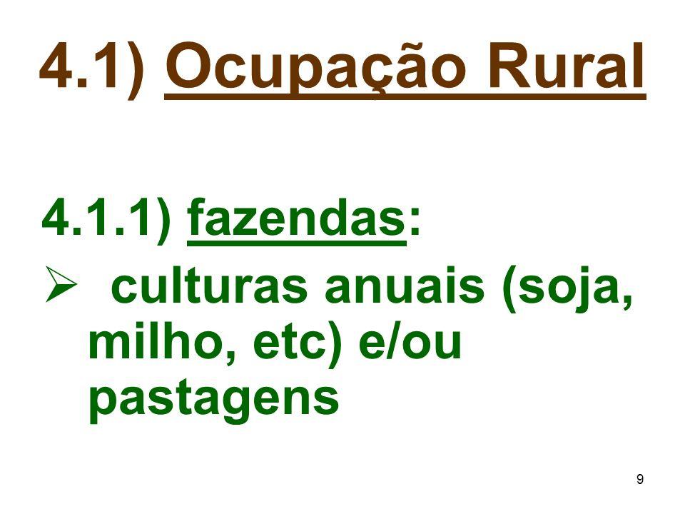 4.1) Ocupação Rural 4.1.1) fazendas: