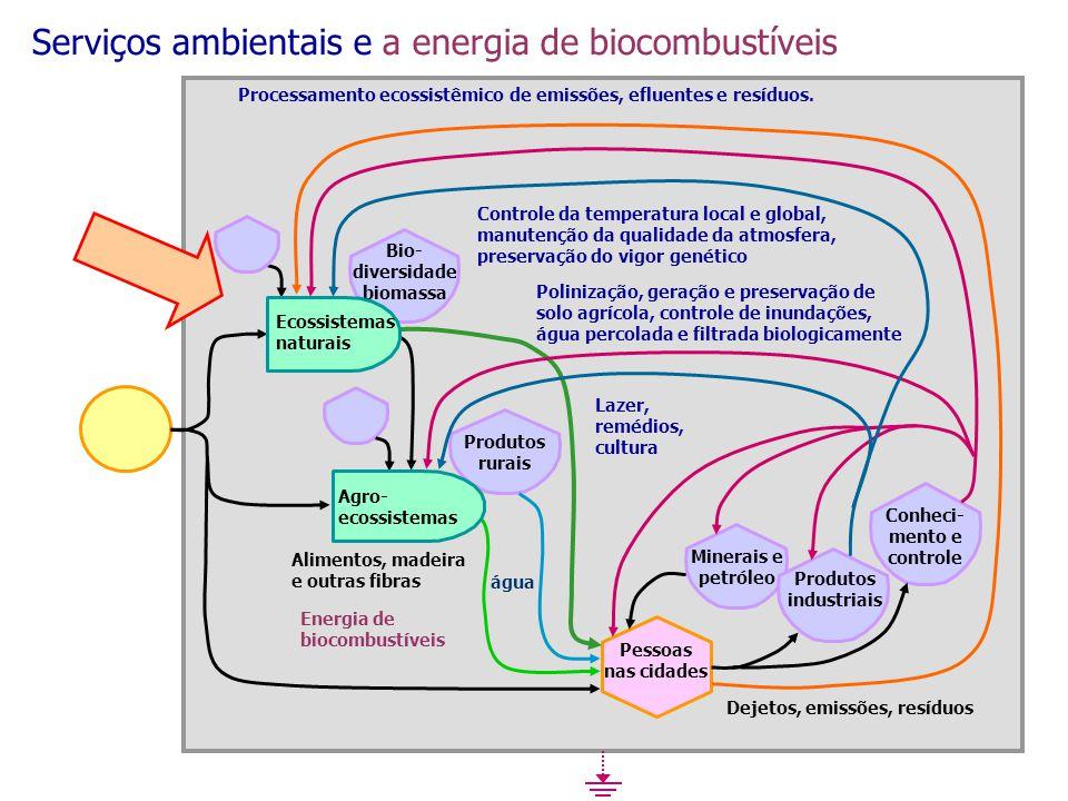 Bio-diversidadebiomassa