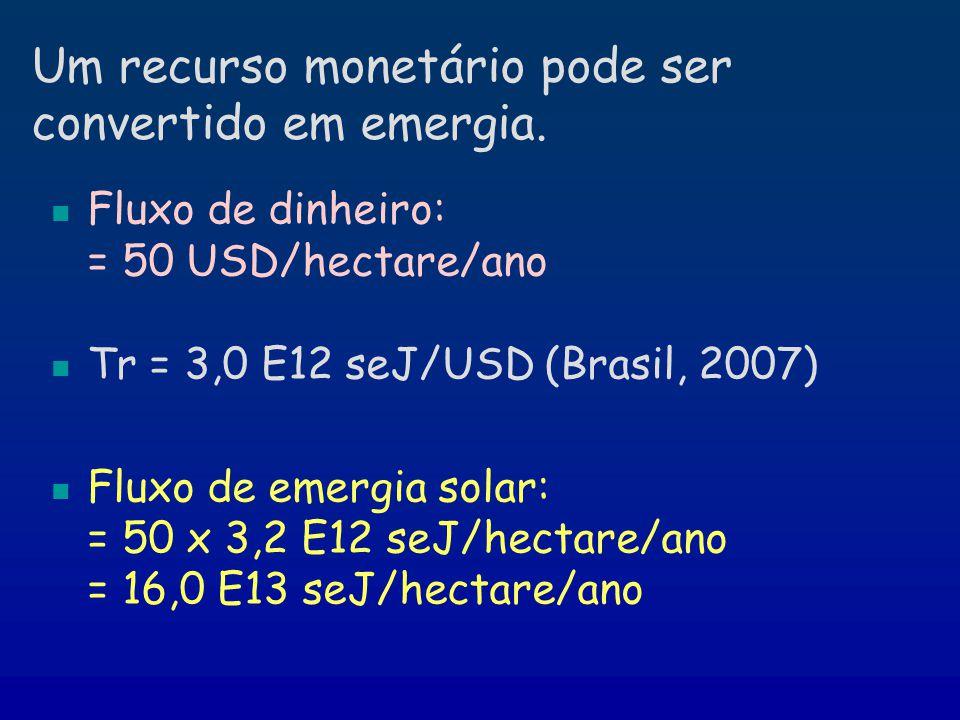 Um recurso monetário pode ser convertido em emergia.