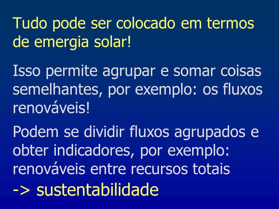 Tudo pode ser colocado em termos de emergia solar!
