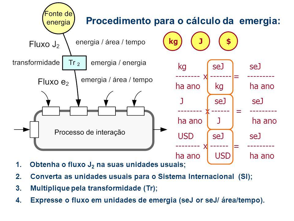 Procedimento para o cálculo da emergia: