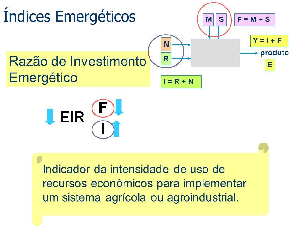 Índices Emergéticos Razão de Investimento Emergético