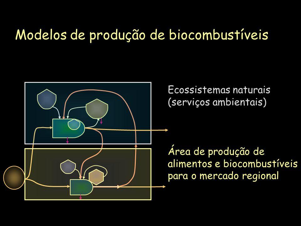 Modelos de produção de biocombustíveis