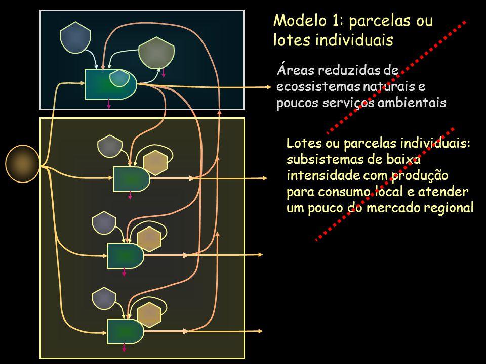 Modelo 1: parcelas ou lotes individuais