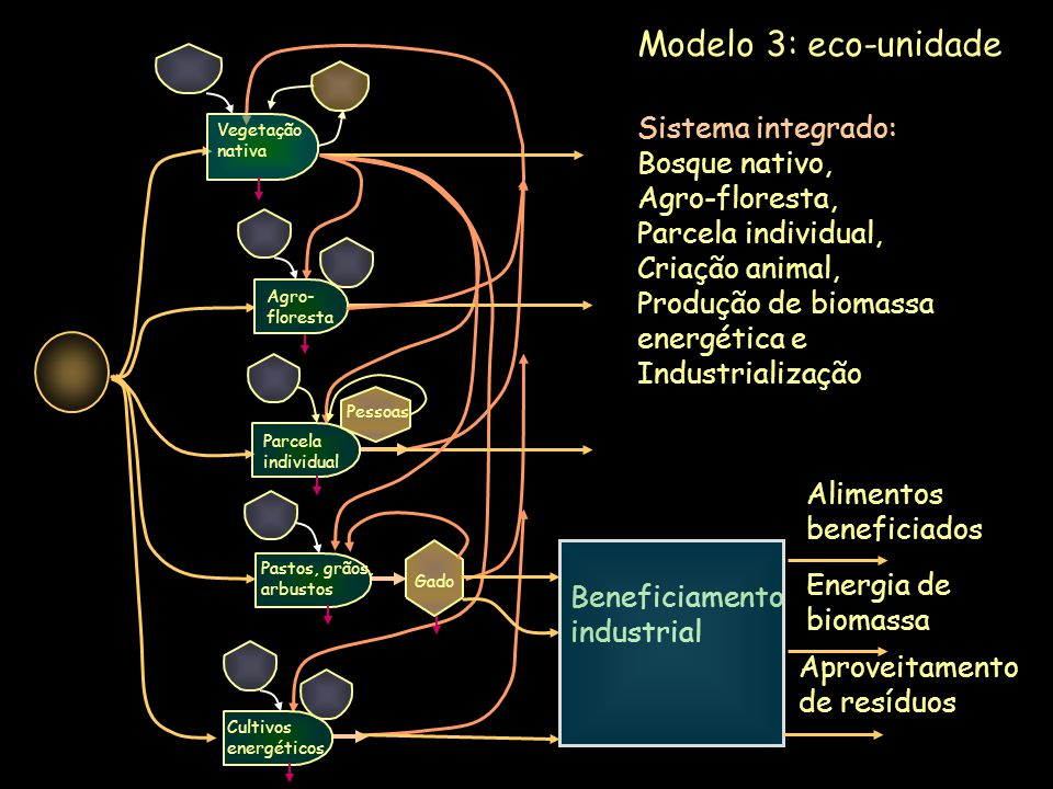 Modelo 3: eco-unidade Sistema integrado: Bosque nativo, Agro-floresta,