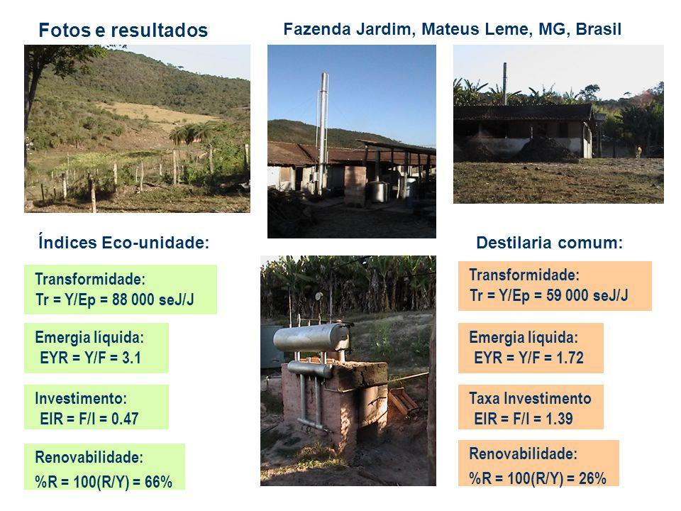 Fotos e resultados Fazenda Jardim, Mateus Leme, MG, Brasil