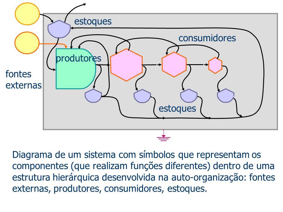 estoques consumidores. produtores. fontes externas. estoques.