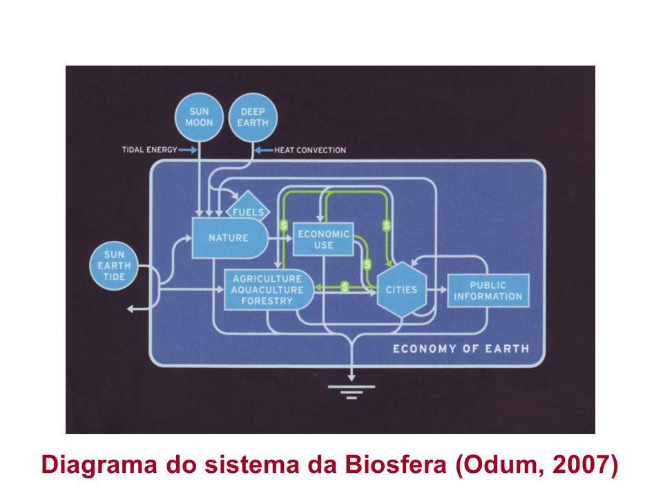 Diagrama do sistema da Biosfera (Odum, 2007)