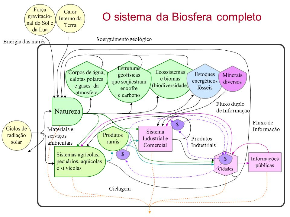 O sistema da Biosfera completo
