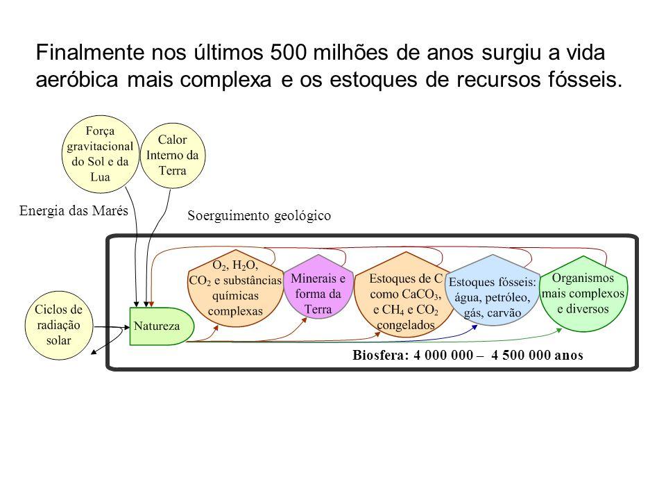 Finalmente nos últimos 500 milhões de anos surgiu a vida aeróbica mais complexa e os estoques de recursos fósseis.