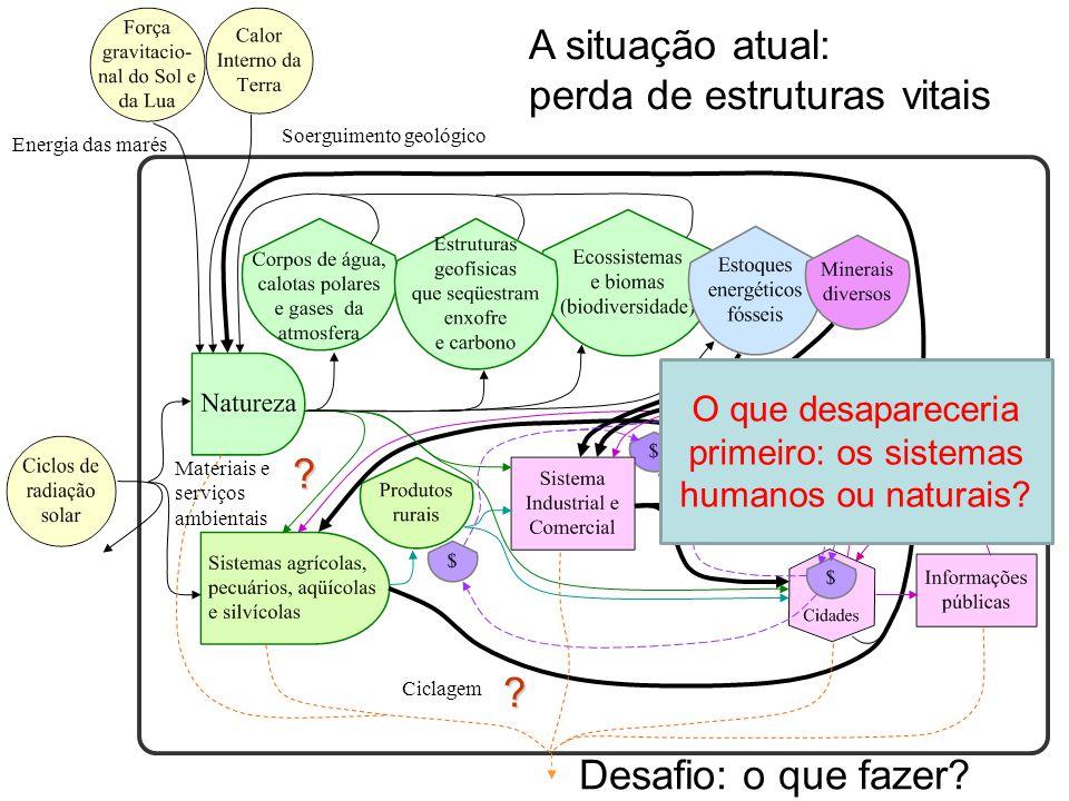 O que desapareceria primeiro: os sistemas humanos ou naturais