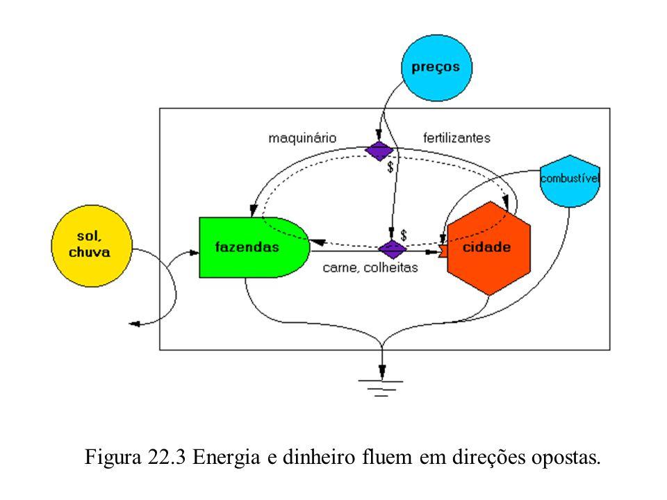 Figura 22.3 Energia e dinheiro fluem em direções opostas.