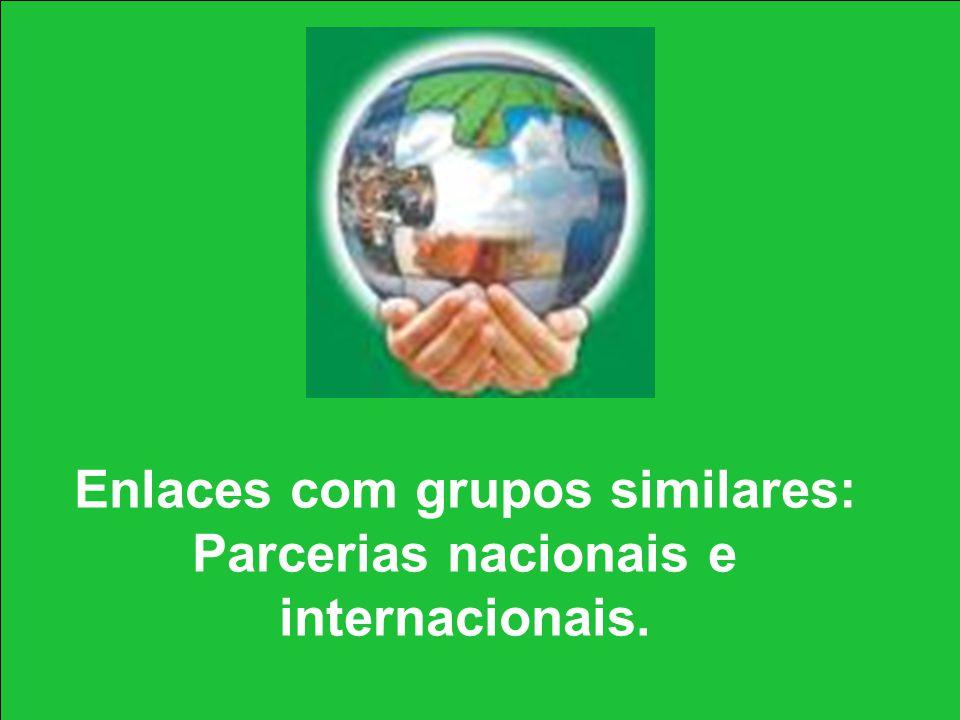Enlaces com grupos similares: Parcerias nacionais e internacionais.