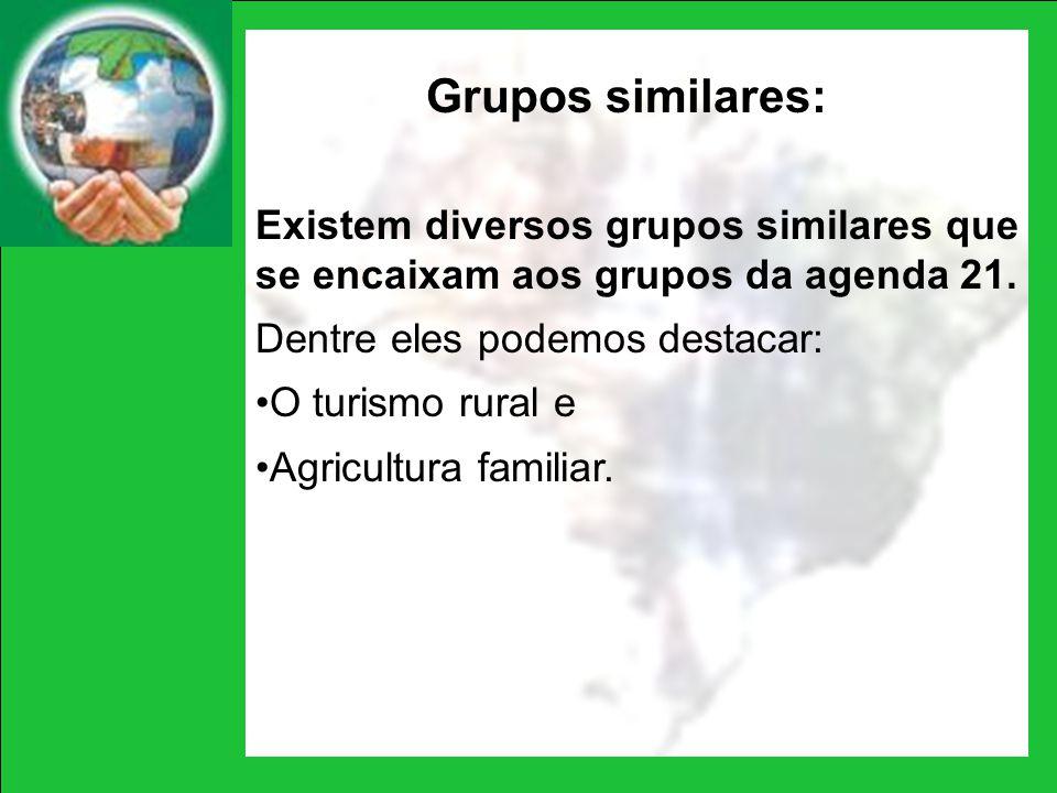 Grupos similares: Existem diversos grupos similares que se encaixam aos grupos da agenda 21. Dentre eles podemos destacar: