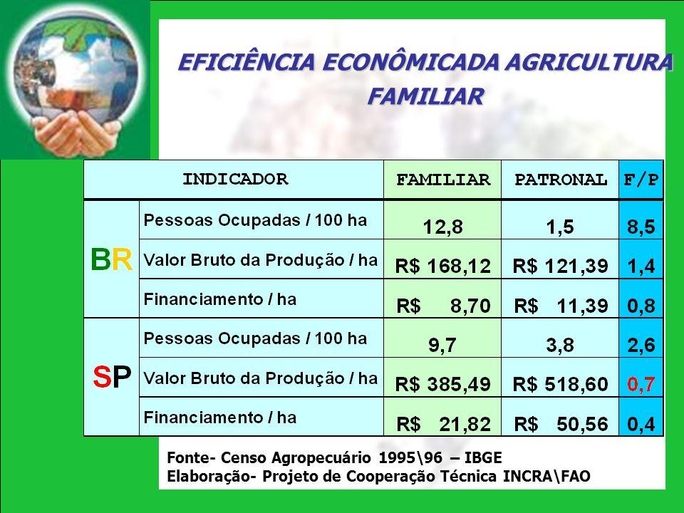 EFICIÊNCIA ECONÔMICADA AGRICULTURA FAMILIAR