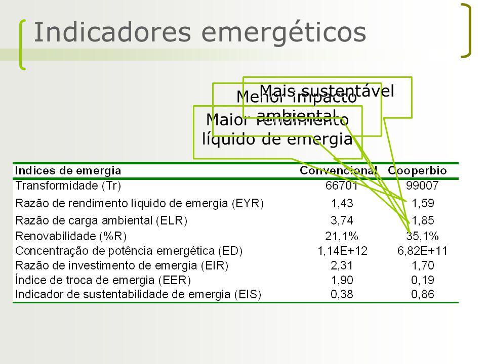Indicadores emergéticos