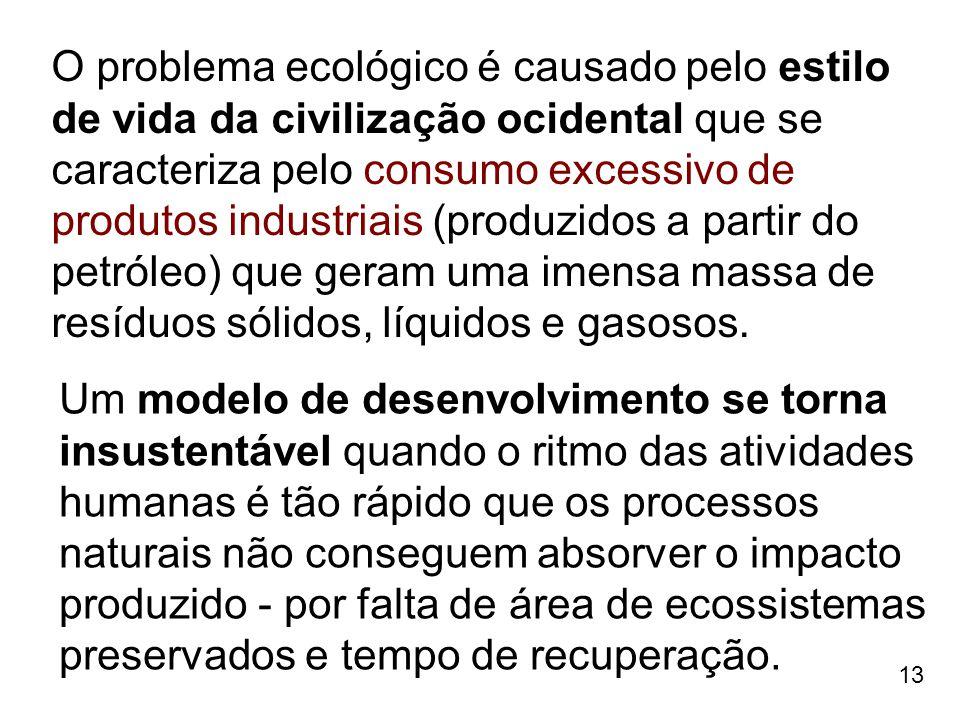 O problema ecológico é causado pelo estilo de vida da civilização ocidental que se caracteriza pelo consumo excessivo de produtos industriais (produzidos a partir do petróleo) que geram uma imensa massa de resíduos sólidos, líquidos e gasosos.