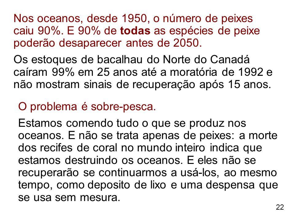 Nos oceanos, desde 1950, o número de peixes caiu 90%