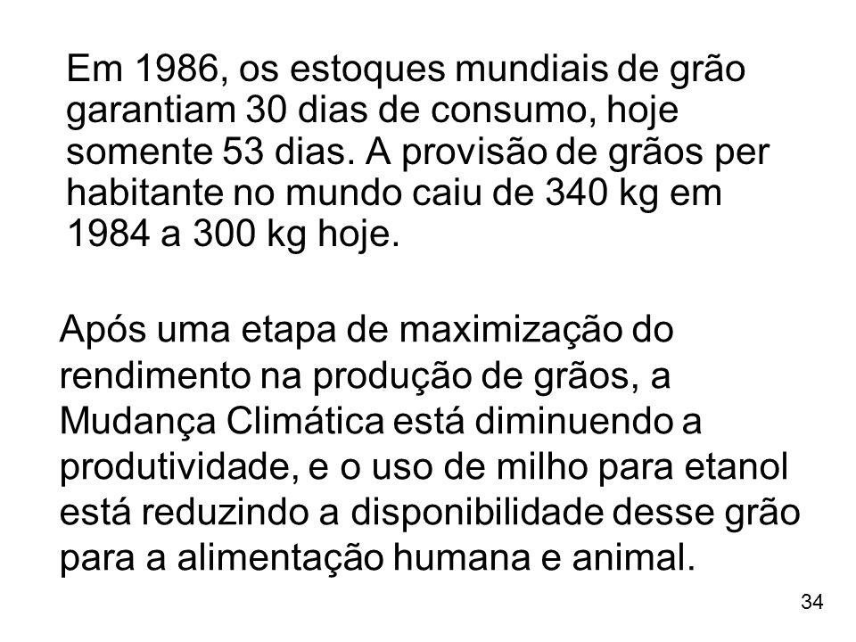 Em 1986, os estoques mundiais de grão garantiam 30 dias de consumo, hoje somente 53 dias. A provisão de grãos per habitante no mundo caiu de 340 kg em 1984 a 300 kg hoje.