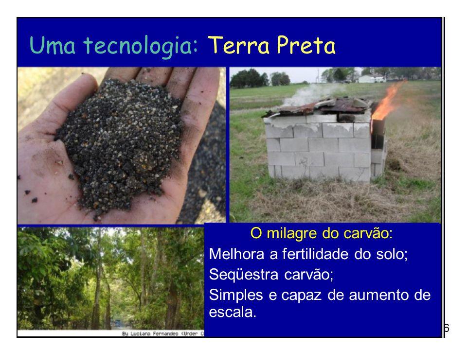 Uma tecnologia: Terra Preta
